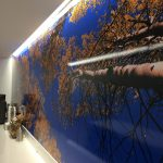 Illinois Custom Vinyl Wall Murals IMG 4744 150x150